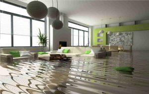 water damage canton